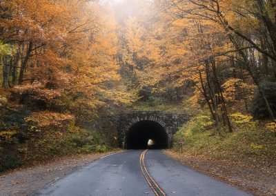 Tunnel with Orange Fall Leaves