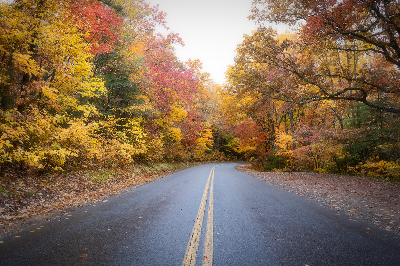 2019 Fall Color Guided Tours Wnc Photo Tours