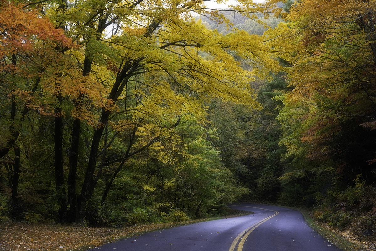Fall Photo Tour